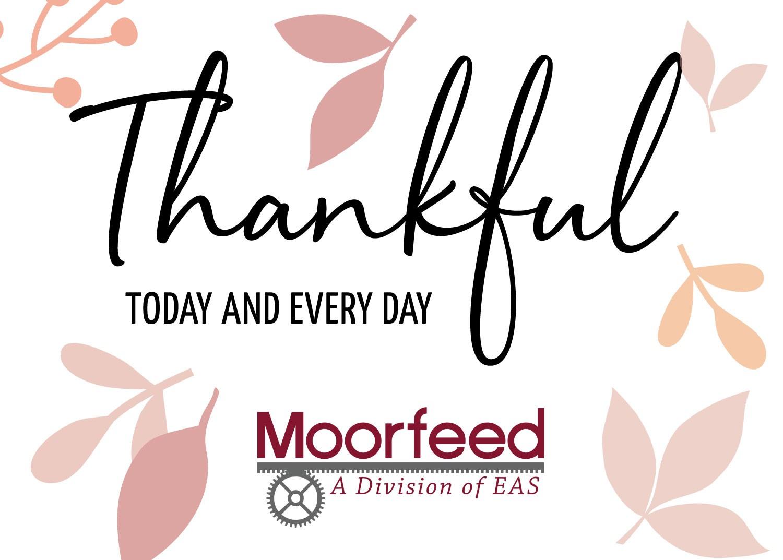 Moorfeed Thanks Giving 2020